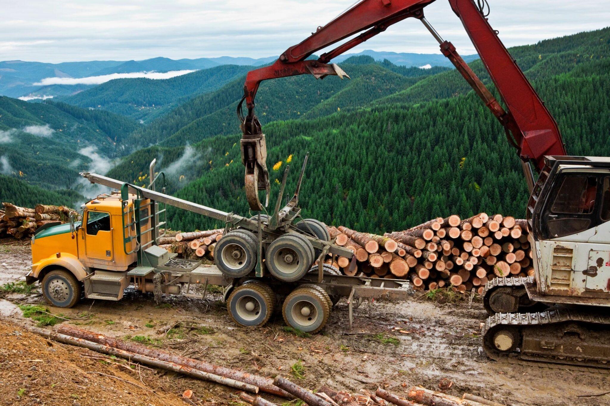 Landscape Equipment Financing