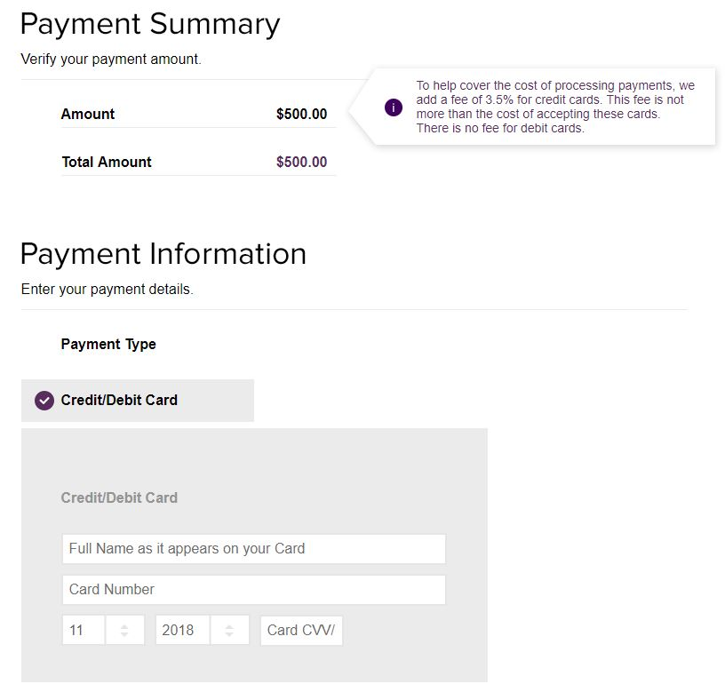 Customer Facing Payment Page Example 2
